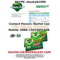 Fly and Flies Glue Trap  Mobile: 0086-15010691838  Email: rachel@bjgreenleaf.com