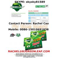 China Fly and Flies Glue Trap  SKYPE ID: skysky81589 Mobile: 0086-15010691838 Email: rachel@bjgreenleaf.com wholesale