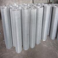 China electric galvanized welded mesh wholesale