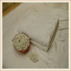China Hot sale mulberry silk quilt/silk duvet/bedding set quilt wholesale