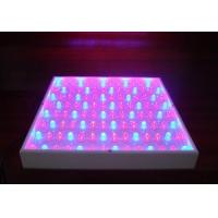 China Agricultural hydroponic 270 watt led grow lights high power 480lm 50 / 60Hz 120PCS on sale