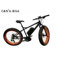 China Black Color Electric Fat Tire Sand Bike With Electric Mid Drive Motor wholesale