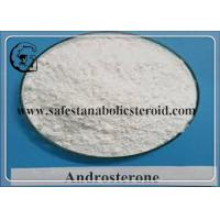 China DHEA Androsterone CAS 53-41-8 Raw Steroid Powders For Lose Weight wholesale