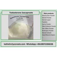 Safe Bodybuilding Testosterone Anabolic Steroid Testosterone Isocaproate CAS 15262-86-9