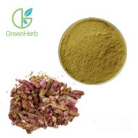 China High Quality FocusHerb Common Coltsfoot Extract / Coltsfoot Flower Extract wholesale