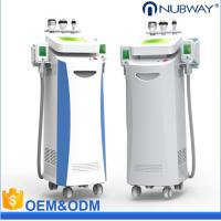 China 5 handles cool sculpting/cryolipolysis wight loss fat removal salon beauty equipment with CE approved wholesale