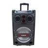 10 Inch Rechargeable multifunction Trolley Speaker with KARAOKE Function
