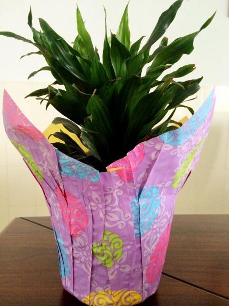 Plant pot images for Fancy flower pots