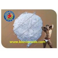 China White Powder Pharmaceutical Raw Materials Tolnaftate For Antifungal Agent CAS 2398-96-1 wholesale
