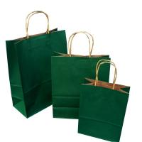 China Disposable Paper Bags With Handles With Embossing Varnishing Printing Handling wholesale