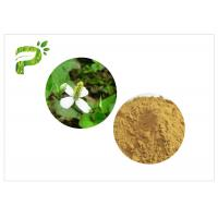 China Traditional Plant Extract Powder Inflammation Houttuynia Cordata Thunb Extract Powder wholesale