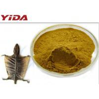 Food Grade Sex Steroid Hormones Tokay Gecko Extract Male Steroid Hormones for sale