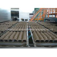 China Automatic Pulp Molding Paper Egg Tray Forming Machine with China Supplier on sale