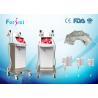 China tratamento gordo do cryolipolysis do gelo da máquina barata do emagrecimento da máquina do gelo do lipo do vaser wholesale