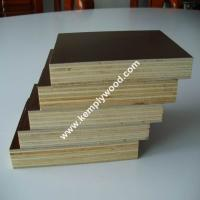 Film faced plywood, Brown film faced plywood, 1220x2440mm,1250x2500mm (PLYWOOD MANUFACTURER)