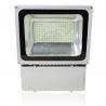 230V / 240V Waterproof LED Flood Lights , Pure White 100W LED Floodlight