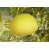 Naringin Natural Health Supplements CAS 10236-47-2 15-98% Natural Citrus Grandis Osbeck Extract for sale
