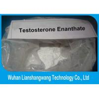 Raw Chemical Testosterone Anabolic Steroid Hormone , Testosterone Enanthate Powder Bodybuilding