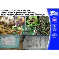 China Foliar Fungicide Copper Oxychloride 50% WP Agricultural Fungicides on sale