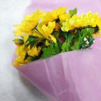 China 100% PP Non Woven Fabric Products Flower Gift Wrapping Soft Feeling Nontextile wholesale