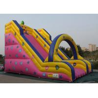 China Customized Inflatable Outdoor Toys Long Slide Type For Kids Entertainment wholesale
