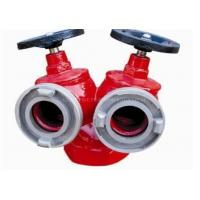China Fire Hydrants For Sale SNSS 65 Indoor Type on sale