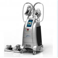 China New Design 4 handles cryolipolysis,hot cryolipolysis cool body sculpting machine,two handl wholesale