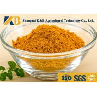 China Natural Dried Fish Powder 60% Protein Content With Healthy Raw Material wholesale