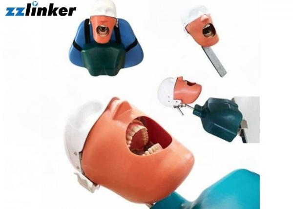 Quality Dental Simulator Dental Chair Unit Detnal Teaching Model Training Simulator Head with Belt for sale