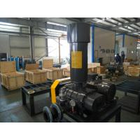 China IP55 Indoor Three Lobe Roots Blower , High Efficiency Positive Displacement Blower on sale