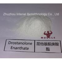 China Stronges Steroid Drostanolone Enanthate / Masteron Enanthate Powder For Cutting Cycles CAS 472-61-145 wholesale