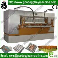 China automatic egg tray making machine with good compete(FC-ZMG6-48) on sale