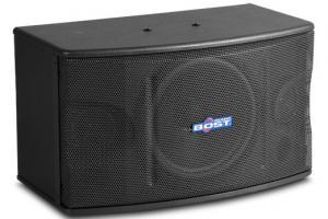 China 10 inch  full range karaoke speaker OK-220 wholesale