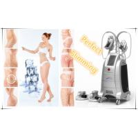 Buy cheap Vertical Cryo Cryolipolysis Fat Freezing Machine from wholesalers