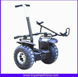 China 2 WHeel Self balance electric scooter segway golf cart wholesale