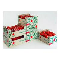 China Rectangle Corrugated Fruit Packing Boxes For Strawberries , Glossy / Matt Lamination wholesale