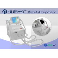 China New Double handles work at the same time cryolipolysis fat freeze body slimming machine on sale