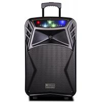 China 45 Watt Outdoor Rechargeable Battery Trolley Speaker System With Led Lights wholesale