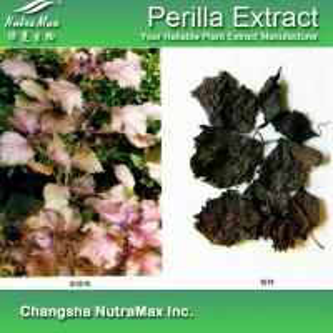 China Perilla Extract wholesale