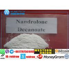 China 360-70-3 bâtiment injectable de muscle de stéroïdes de Decanoate Durabolin Deca de Nandrolone wholesale