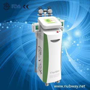 China Newest amazing result cryolipolysis+velashape to lose weight on sale