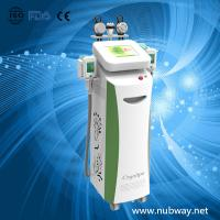 China Vertical amazing result cryolipolysis cryotherapy fat freeze to losing weight on sale