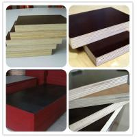China AA grade film faced plywood wholesale