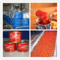 China Complete Tin Can Ketchup Tomato Paste Production Line 1 Year Warranty wholesale