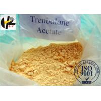Buy cheap Testosterone Anabolic Steroid Powder Trenbolone Acetate/Tren Ace/Tren Acetate from wholesalers