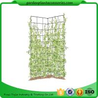 "China Two Panel Folding Screen Trellis , Garden Trellis Plant Support ​35-1/2"" W x 58"" H overall  Powder-coated steel wholesale"