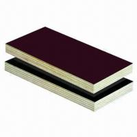 China Commercial Plywood/Film Faced Plywood/Shuttering Plywood/Veneer Plywood/Veneer Glued Wood wholesale
