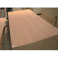 Bintangor plywood for Commercial Use