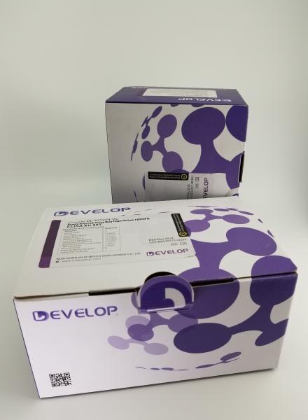 Quality Human Scleraxis Homolog (SCX) ELISA Kit for sale