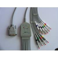 China Nihon Kohden One- Piece Series EKG Cable With Leads wholesale